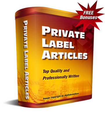Product picture CP - Professional PLR Articles + Special Bonuses!
